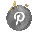 Cirles Pin